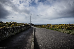 Down The Road! (BGDL ~ Falling Behind But Will Catch Up!!) Tags: lightroomcc nikond7000 bgdl odc nikkor18105mm3556g urban maryboroughroad prestwick hittheroadjack