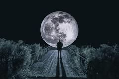 My Muse Moon HSS (superdavebrem77) Tags: hss happysliderssunday