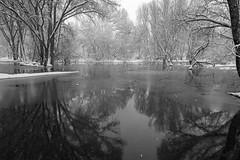 Watson Woods Riparian Preserve, Prescott, AZ. (j1985w) Tags: arizona trees water river granitecreek prescott snow reflection