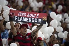 000_1DG6HV.jpg (prodbdf) Tags: horizontal fan riodejaneiro brazil