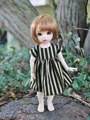 Stripes! (AluminumDryad) Tags: fairyland ante tinybjd bjd balljointeddoll doll resin stripes sewing handmade dolldress dollclothes yosd littlefee ltf