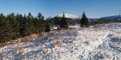 HalfFrameF-[OlympusPenD]-4 (stepanov9) Tags: zuiko32mmf19 olympus zuiko analogphoto negativfilm minoltadimagescanelite5400 winter snow sky nature landscape halfframe olympuspend