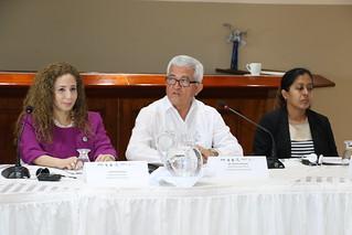 Mesoamerica Disaster Risk Management Meeting 28/2/19