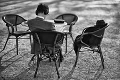 Les révisions (Mathieu HENON) Tags: leica leicam noctilux 50mm m240 monochrome laphotodulundi street streetphoto streetlife france hautsdeseine sceaux parcdesceaux parc terrasse café révisions étudiant chic veste standing intello bnw noirblanc nb blackwhite bw photoderue lecture chapeau casque baindesoleil