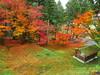 京都龍穏寺      Kyoto Ryuonji Temple (Eiki Wang) Tags: kyoto momiji temple ryuonji ryuonjitemple fall autumn sonobe nantan 龍穏寺 楓 紅葉 南丹 園部 京都 りょうおんじ なんたんし