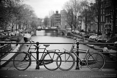 Amsterdam19-005-50mm (Dan Bachmann) Tags: amsterdam 2019 europe netherlands leica m10 leicam10 bicycle bicycles canal nederland