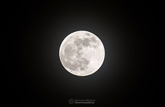 Full moon before eclipse (mythicalireland) Tags: full moon lunar surface face night sky astronomy astrophotography eclipse