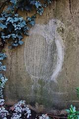 Matt Thieu_1689 rue Curial Paris 19 (meuh1246) Tags: streetart paris oiseau animaux mattthieu ruecurial paris19