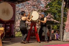 CherryBlossomDC2019-672.jpg (carlton.colter) Tags: kizuna cherryblossomdc taiko taikotakeover sakurataikofest washington dc usa