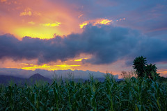 Sunset in the Philippines (STEHOUWER AND RECIO) Tags: sunset clouds colours landscape filipijnen sky philippines pilipinas filipinas scenery rural trees tropical asia mountain mountains sugarcane view cloud colors green gold bue red orange summer heat hot nature