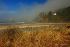 Foggy Morning and the Light Keepers House from Heceta Beach in Heceta Head State Park on the Oregon Coast (@randalljhodges) Tags: fog foggy morning light lightkeepershouse hecetaheadlighthouse hecehtahead heceataheadstatepark oregon oregoncoast westcoast west highway101 seastacks rockformations grass travel scenic destination usa unitedstates