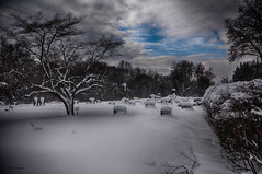 They Covered - Are they? (Igor Danilov Philadelphia) Tags: grave yard peace peaceful journey last cover snow beginning end above stone life meaning point sense questions answers silence black white clearance light clear gap time short most breakintheclouds