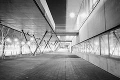 night walk in Stuttgart (andreasmaurer89) Tags: leicam3 leica m3 ilford panf iso50 voigtländercolorskopar21mmf4 voigtländer 21mm f16 f22 night blackandwhite rodinal rodinal1100 longtermexposure film analog schwarzweis monocrom stuttgart badcannstatt schleyerhalle