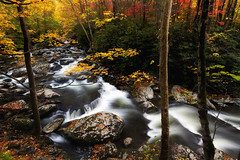 Autumn in the Smoky Mountain National Park (jodell628) Tags: fall autumn stream smoky mountains national park mountain waterfalls waterfall