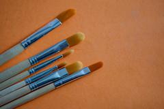 Brush Stroke (Rushay) Tags: supplies backgrounds assortment paint brush art orange variety portelizabeth southafrica