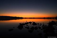 Back on the Lake 2019 (Yarin Asanth) Tags: season goldenlight yellow winter bodensee sup standuppaddling afterglow sundown sunset lakeconstance yarinasanthphotography gerdkozikfotografie