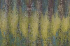 Corrugated Iron 33 (steveholding8) Tags: corrugatediron metal texture abstract patina