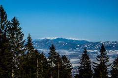 0160_DSC_2595 (marcellszmandray) Tags: kirándulás tél lucskaifátra szlovákia hó fátra