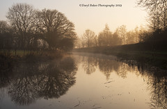 Grand Western Canal (Daryl 1988) Tags: canal tiverton devon devonlife d500 nikon nikonphotography landscape landscapephotography waterscape reflections weather mist sunrise february 2019 morning sunday weekend spring photography photographer photooftheday exposure explore walk adventure camera grandwesterncanal