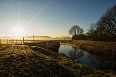 Gold Rush (Bart Van Steyvoort) Tags: fuji fujifilm demervallei langdorp belgium morning sun ochtend zon xf1655 xt2 gold goud