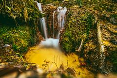 Water (A. Aleksandravičius) Tags: girionys šaltinis spring long exposure irix 11 irix11mm iris lens