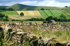 Dovedale (Heaven`s Gate (John)) Tags: dovedale derbyshire landscape dry stone wall fields blue sky sunshine johndalkin heavensgatejohn trees grass hill mountain rolling summer 25faves