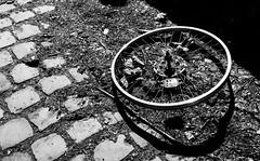 It's hard to believe that there's nobody out there, it's hard to believe that I'm all alone (frankdorgathen) Tags: alpha6000 sonyzeiss24mm alltag banal mundane urban urbex südbahnhof ruhrpott ruhrgebiet dortmund monochrome blackandwhite schwarzweiss schwarzweis verlassen abandoned rad wheel