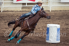 Calgary Stampede 2016 (tallhuskymike) Tags: calgary stampede event rodeo cowgirl horse action alberta 2016 calgarystampede prorodeo outdoors barrelracing