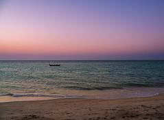 Small hours (elzauer) Tags: brazil piauí adventure environment environmentalissues idyllic landscape nature outdoors tourism brazilianculture coastline socialissues northeast