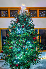 live christmas tree decorated for holidays (DigiDreamGrafix.com) Tags: christmas decorations newyear christmaseve festive greeting happy holiday xmas merry christmastime firtree toys presents bauble santa owl fun tradition green home livingroom