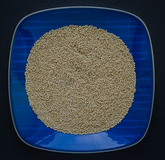 Amaranth seeds (frankmh) Tags: seed amaranth food round plate hittarp sweden