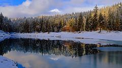 Winter Wonderland ... (ej - light spectrum) Tags: winter landscape snow lake see reflection spiegelung forest wald nebel fog switzerland schweiz suisse svizzera alps alpen dezember december 2018 fujifilm xt2 landschaft caumasee graubünden