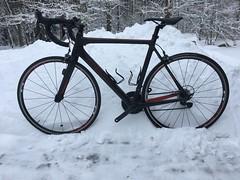 Min frihet: En cykeltur och uppleva naturens skiftningar. Det kommer en vår ..... (Göran Nyholm) Tags: cyklist cykling fotosontag fotosöndag frihet fs190203