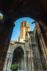 Barcelone-147 (bonacherajf) Tags: barcelona barcelone catalogne catalunya espagne espania spagna cathédrale cloitre