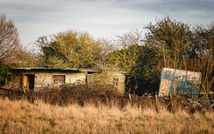 Run Down (Mandy Willard) Tags: 365 1602 2019th73 wreck pigsty countryside field horsebox stable trees