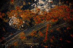 1Y2A4608 (Glassholic) Tags: rust rusty rouille color abstract abstrait