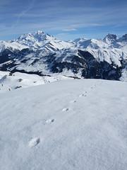 DSCF3718 (Laurent Lebois ©) Tags: laurentlebois france nature montagne mountain montana alpes alps alpen paysage landscape пейзаж paisaje savoie beaufortain pierramenta arèchesbeaufort