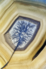 agate III (dedalus11) Tags: macro makro makroaufnahme space achat mineral weltall nahaufnahme tamron dark matter stone gem