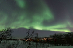 Tromsö 2019 (283 von 699) (pschtzel) Tags: nordlicht norwegen2019 tromso