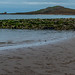 LATE EVENING VISIT TO CLAREMONT BEACH [HOWTH]-146994