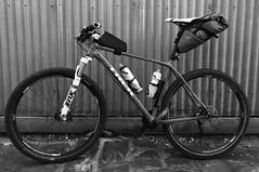 2019:46 The Superfly (neonluxe) Tags: bike cycling bikepacking revelate apidura trek superfly pro