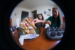 4998 Alog (mliu92) Tags: home sanmateo gingerbread house candy frosting calcifer son figgy daughter belomo peleng 835
