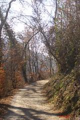 IMG_7838 (Pfluegl) Tags: graz steiermark styria österreich austria europa europe eu hiking wandern stadt chpflügl chpfluegl christian