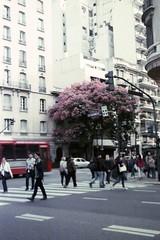 img705 (Buenos Aires loucoporanalogicas) Tags: pentona ii kodak vison 250 d buenos aires argentina