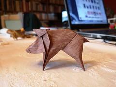 Little boar, cinghialetto - Stefano Borroni (Stefano Borroni (Stia)) Tags: origami origamipaper origamicdo origamilove origamiart piegarelacarta arte folding foldingpaper papiroflexia carta animali natura wwf boar cinghiale littleboar cinghialetto art nature cdoitalia