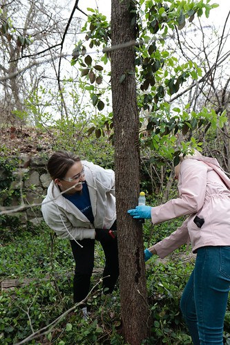 """Caleres helps to clean up Forest Park • <a style=""""font-size:0.8em;"""" href=""""http://www.flickr.com/photos/45709694@N06/33716928148/"""" target=""""_blank"""">View on Flickr</a>"""
