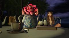 Chloe in the Evening (Tevor Z) Tags: secondlife saltwater sim chloe tea night evening