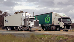 Race Ya (2/2) (Jungle Jack Movements (ferroequinologist)) Tags: kenworth k200 t900 rocky lamattina sons fruithaul carrots vege fruit versus move t904 woolworths ron finemore volvo fm450 transport yass haulage bowning nsw new wales australia hume highway horsepower big rig haul freight cabover trucker drive carry delivery bulk lorry hgv wagon road nose semi trailer deliver cargo interstate articulated vehicle load freighter ship motor engine power teamster truck tractor prime mover diesel driver cab cabin loud rumble beast wheel double b pass
