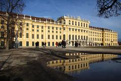 Schloß Schönbrunn (Krzysztof D.) Tags: wien vienna wiedeń österreich austria architecture architektura building budynek pałac palace europe europa puddle kałuża