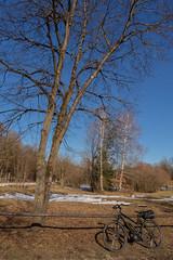 2019 Bike 180: Day 22, February 18 (suzanne~) Tags: 2019bike180 bike bicycle westpark munich bavaria germany winter grass snow sky tree